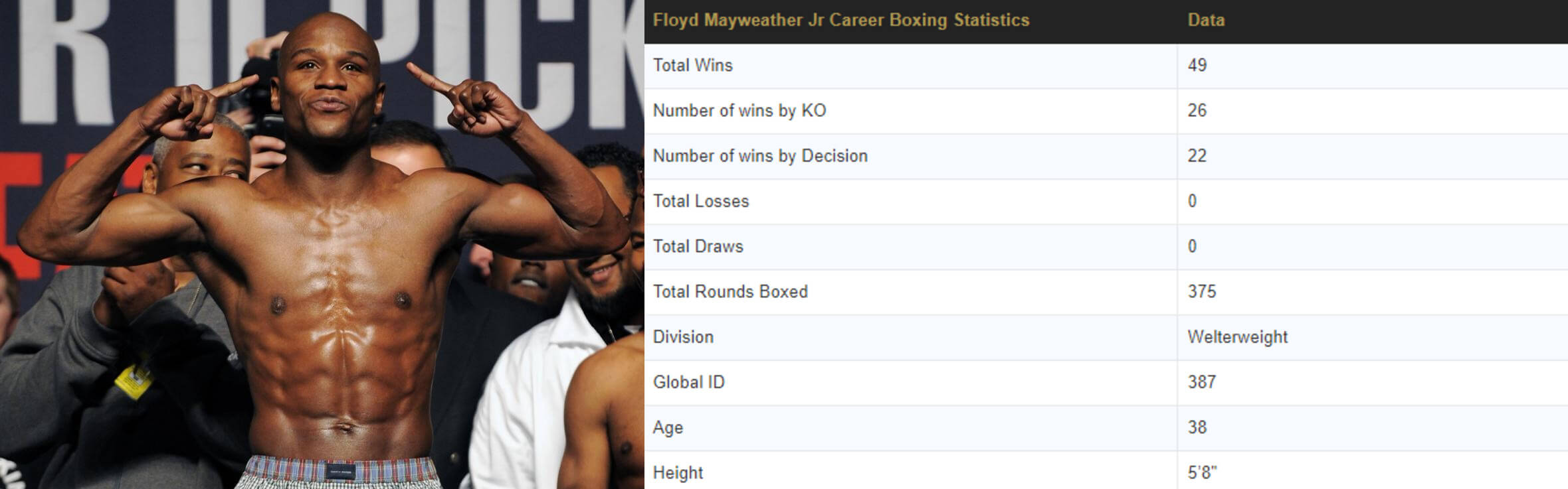 floyd mayweather fight stats